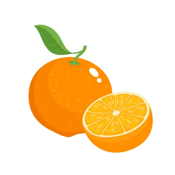 bright vector set of colorful juicy orange. - orange color stock illustrations