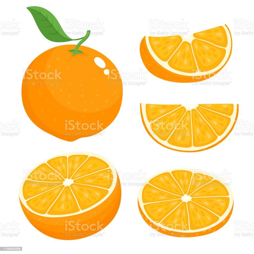 Helle Vektor-Set von bunten saftigen Orange. - Lizenzfrei Blatt - Pflanzenbestandteile Vektorgrafik
