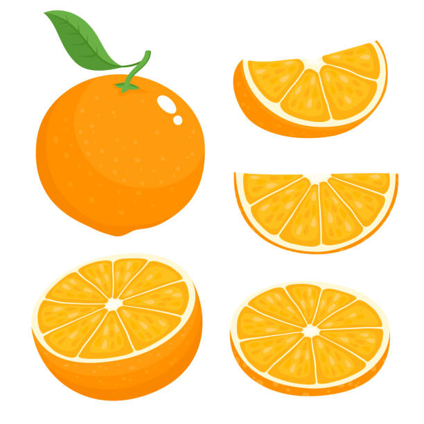 helle vektor-set von bunten saftigen orange. - orange stock-grafiken, -clipart, -cartoons und -symbole
