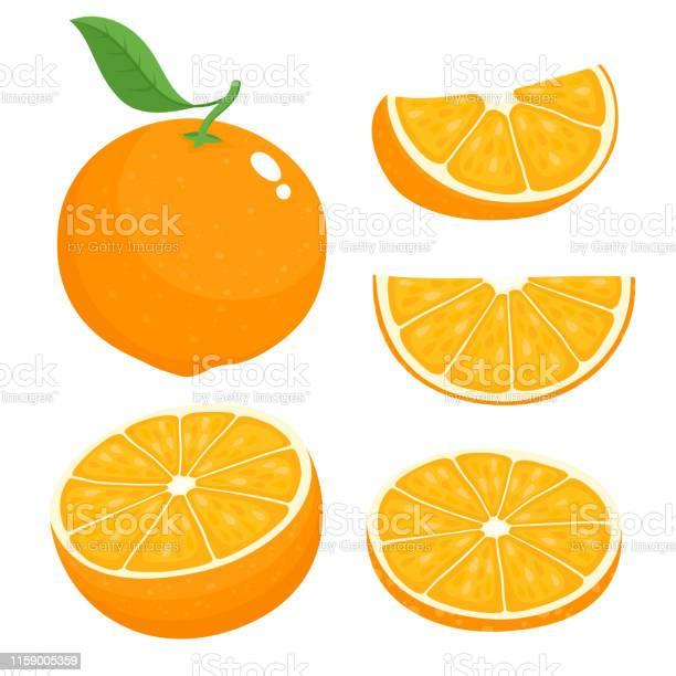 Helle Vektorset Von Bunten Saftigen Orange Stock Vektor Art und mehr Bilder von Blatt - Pflanzenbestandteile