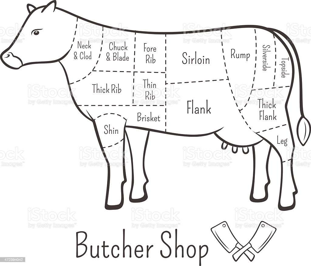 british cuts of beef diagram and butchery design element stock Diagram of a Button british cuts of beef diagram and butchery design element royalty free british cuts of beef
