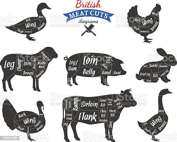 British meat cuts diagrams vector id495054684?b=1&k=6&m=495054684&s=612x612&h=zsww7d3qfenidtva307xwm3 1nvnn0xgx4gbxjiamag=