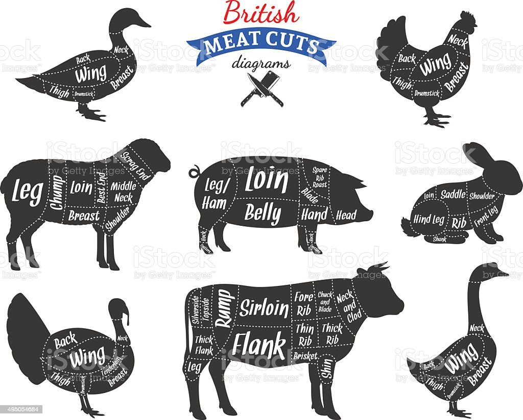 British Meat Cuts Diagrams vector art illustration