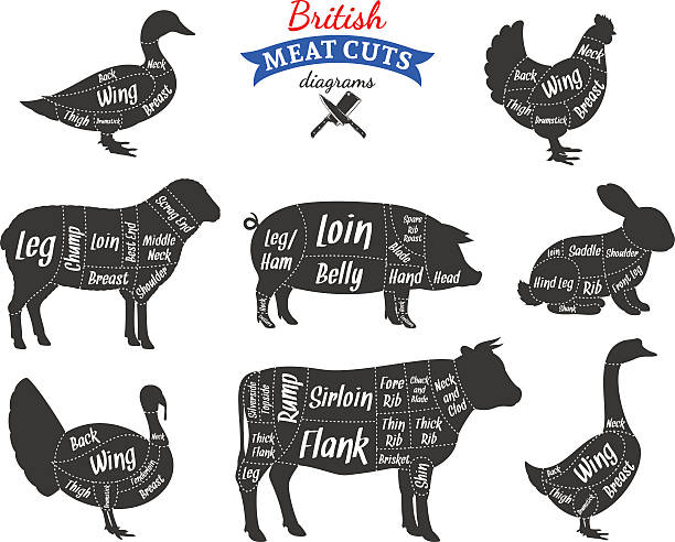 영국 고기류 절단 다이어그램 - 소고기 stock illustrations