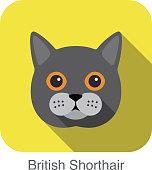 British Shorthair, Cat breed face cartoon flat icon design