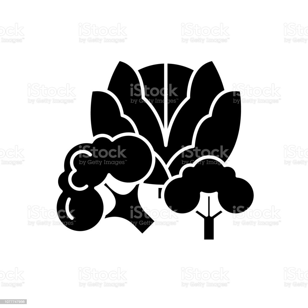broccoli black icon vector sign on isolated background broccoli concept symbol illustration stock illustration download image now istock https www istockphoto com vector broccoli black icon vector sign on isolated background broccoli concept symbol gm1077747956 288716739