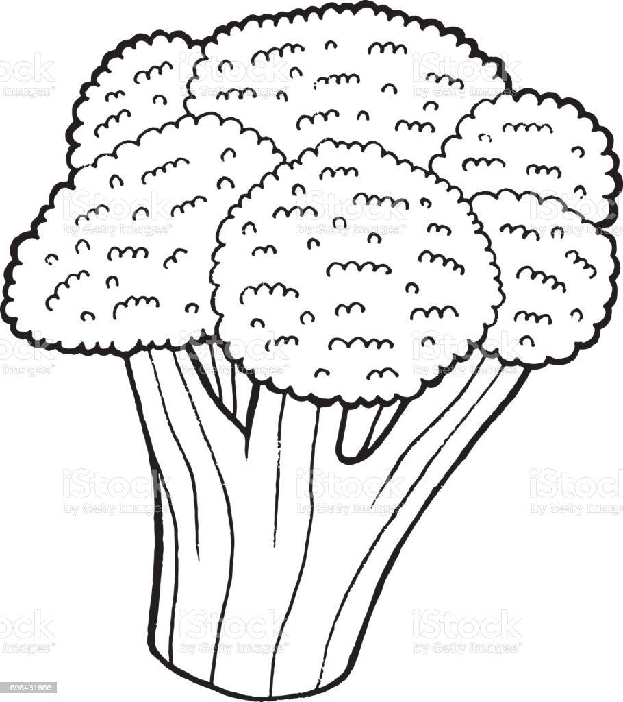 Ilustración de Brócoli Para Colorear Ilustración De Dibujado A Mano ...