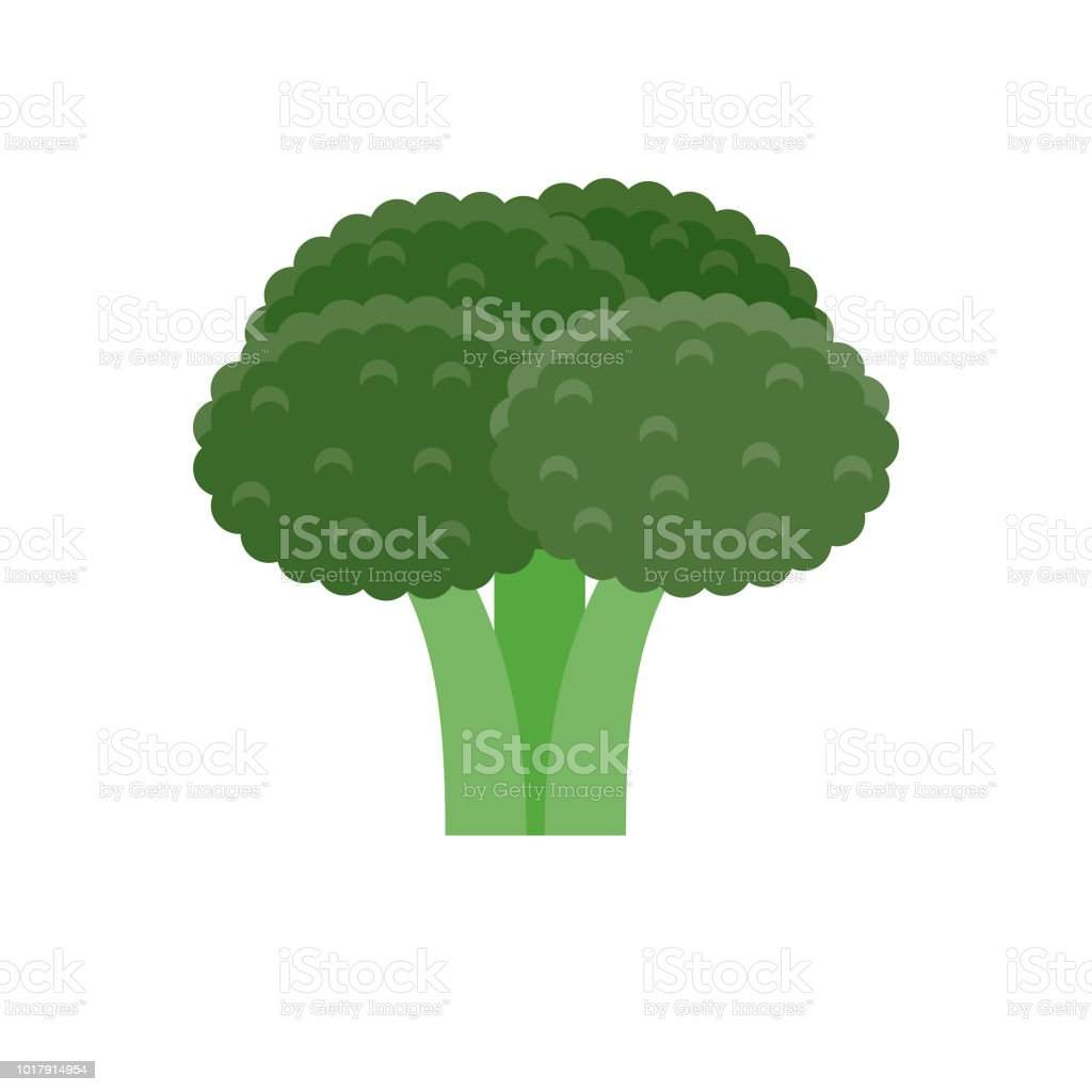 Broccoli Flat Design Vegetable Icon vector art illustration