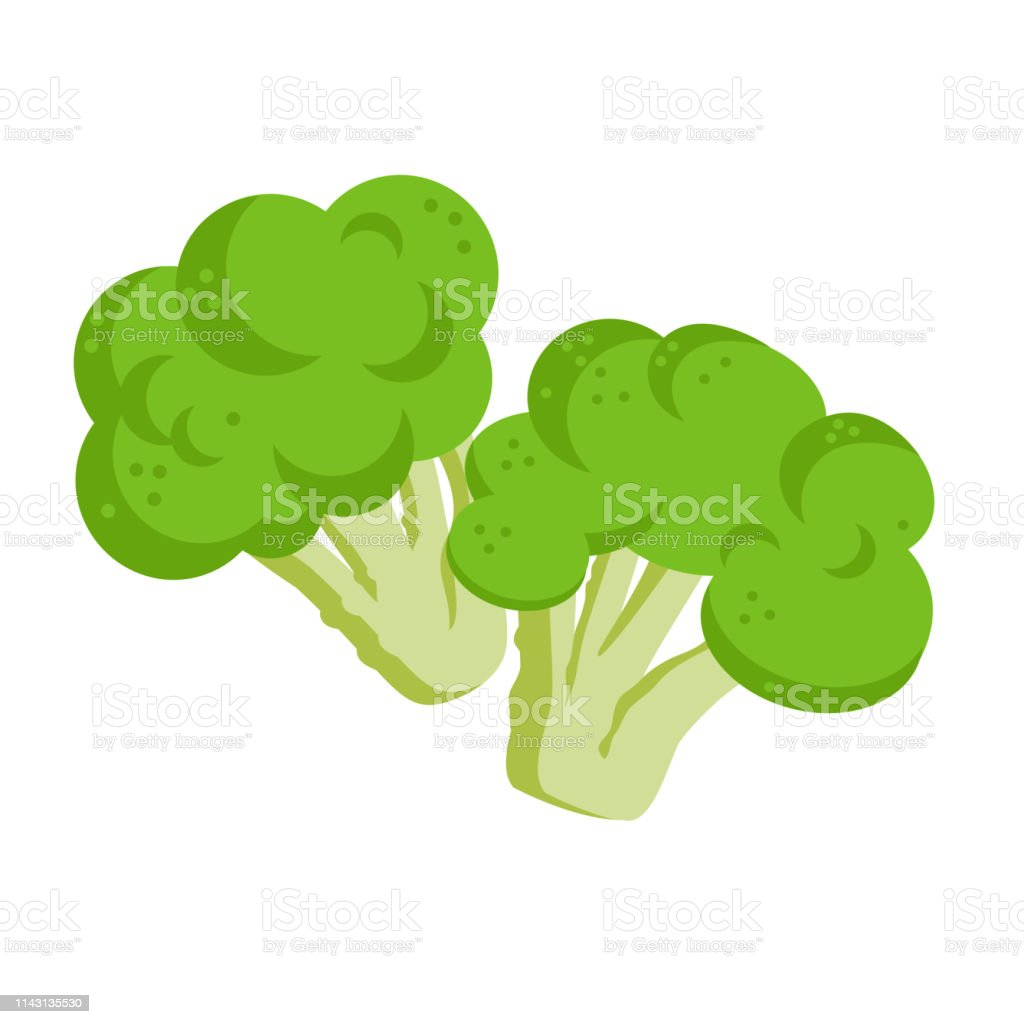 broccoli icon flat illustration of broccoli vector icon isolated on white background stock illustration download image now istock broccoli icon flat illustration of broccoli vector icon isolated on white background stock illustration download image now istock