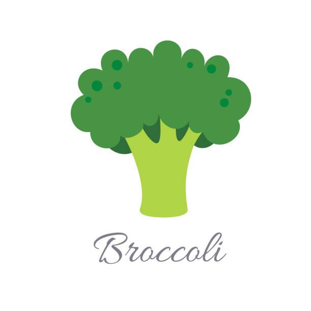 stockillustraties, clipart, cartoons en iconen met broccoli pictogram met titel - broccoli