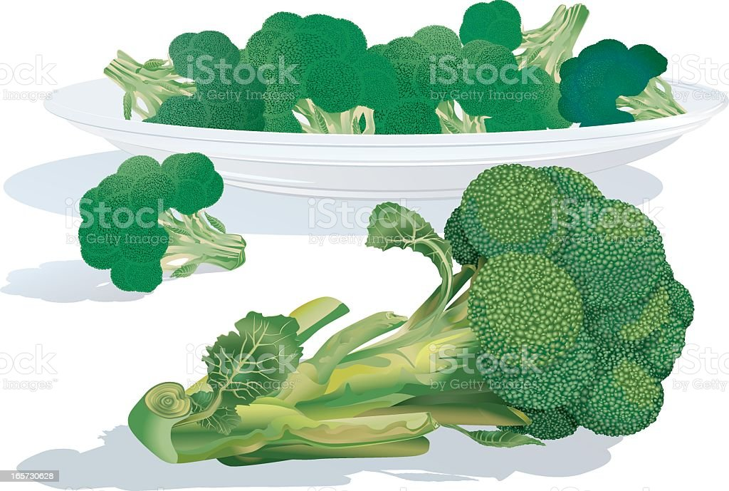 Broccoli Sprouts royalty-free stock vector art