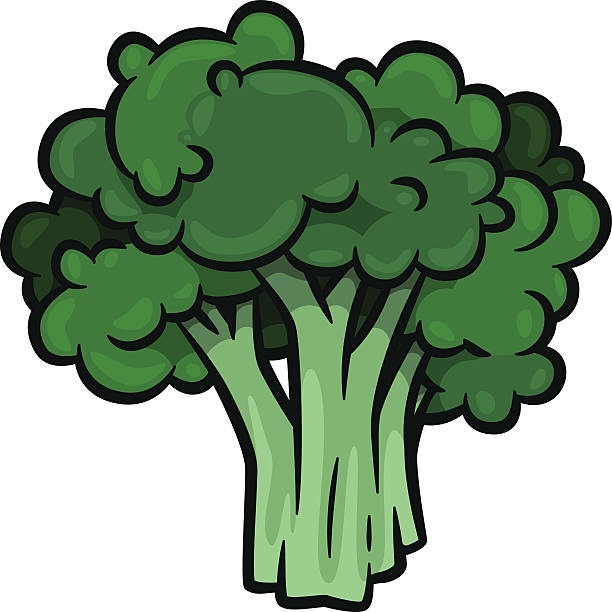 Broccoli vector art illustration