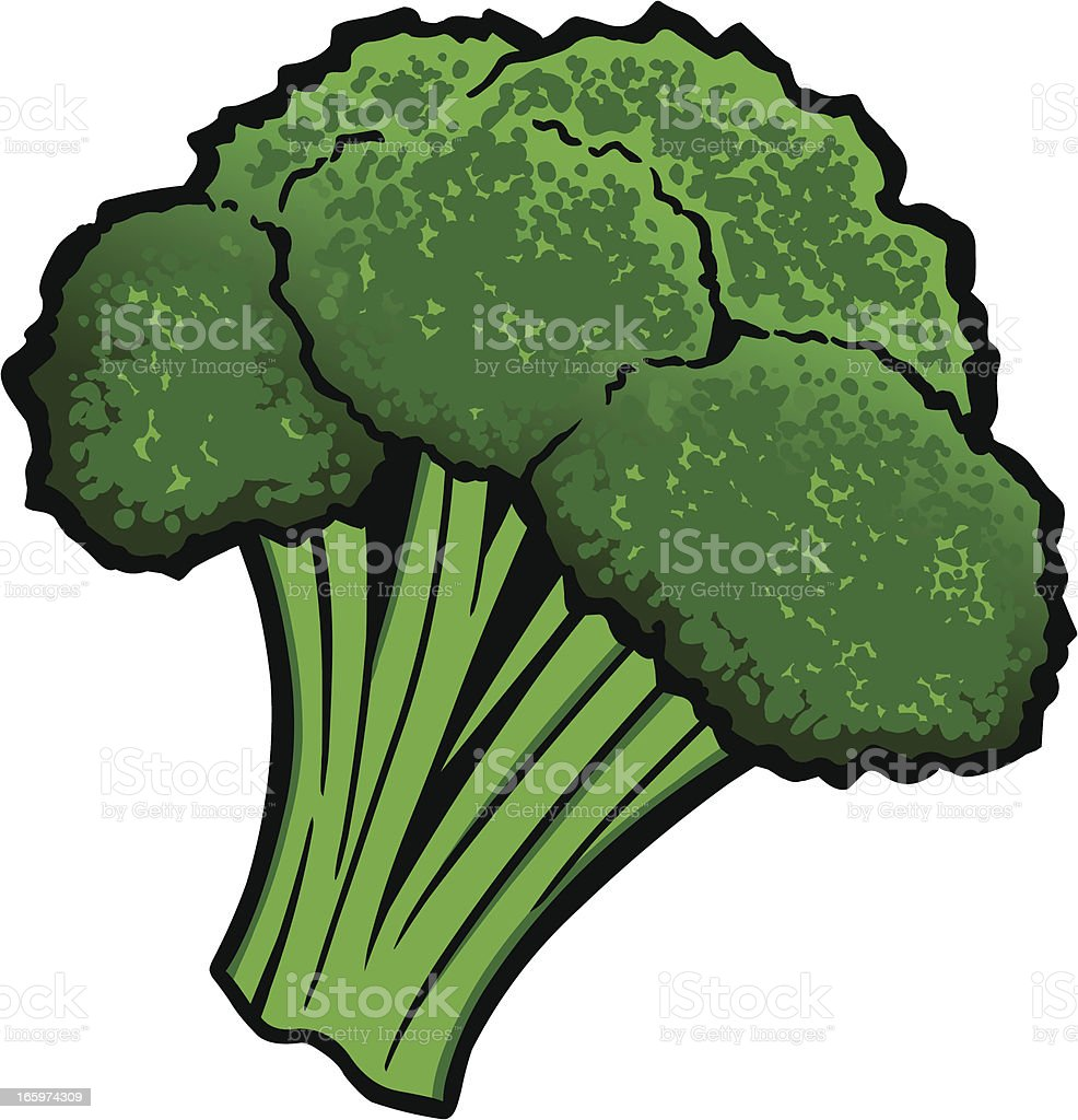 royalty free broccoli clip art vector images illustrations istock rh istockphoto com broccoli clip art black and white broccoli free clip art