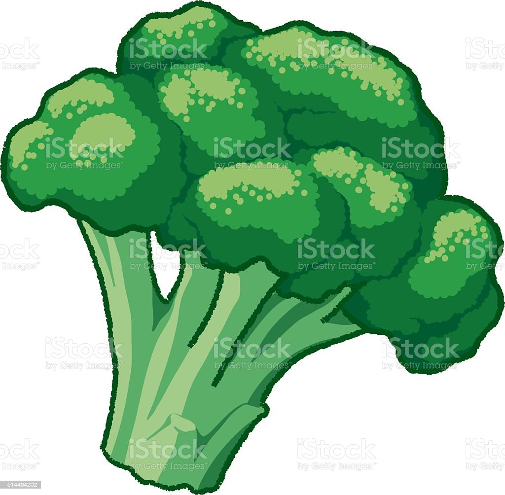 royalty free broccoli clip art vector images illustrations istock rh istockphoto com broccoli clip art black and white broccoli pictures clip art