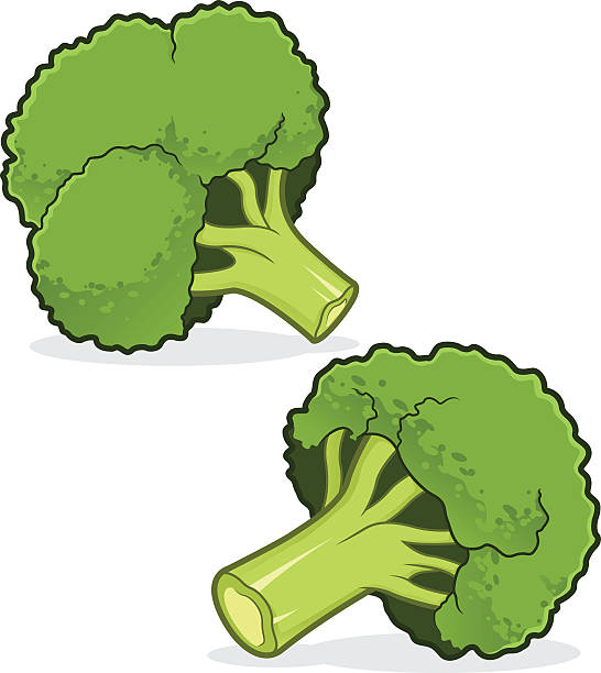 broccoli vector art graphics freevector com https www freevector com vector broccoli
