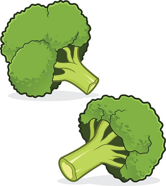 Brokkoli  – Vektorgrafik