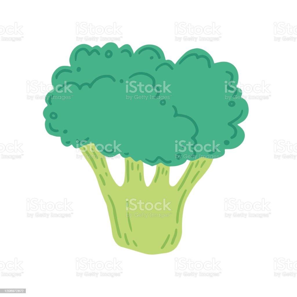 broccoli vector illustration cartoon style stock illustration download image now istock https www istockphoto com vector broccoli vector illustration cartoon style gm1206972872 348304217
