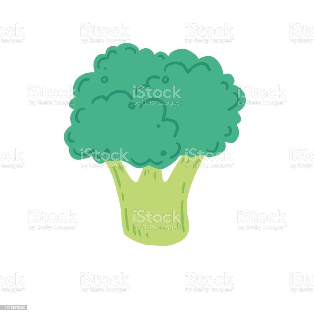 broccoli vector illustration cartoon style stock illustration download image now istock https www istockphoto com vector broccoli vector illustration cartoon style gm1213976330 353021166