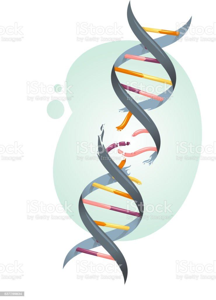 broken DNA string vector art illustration