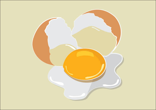 broken egg flat-design - eizelle stock-grafiken, -clipart, -cartoons und -symbole