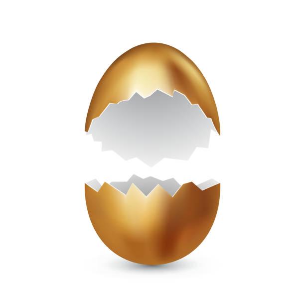 stockillustraties, clipart, cartoons en iconen met gebroken gouden easter egg op witte achtergrond. gekleurde eieren. gekraakte gouden schelp. happy easter concept. vector, ruimte voor tekst - dierenei