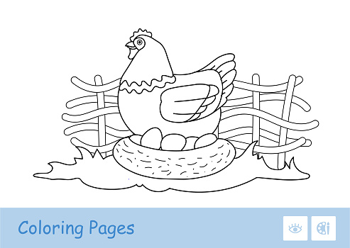 Brood chicken sitting on eggs in nestle on countryside farm bird yard contour kids coloring book illustration.