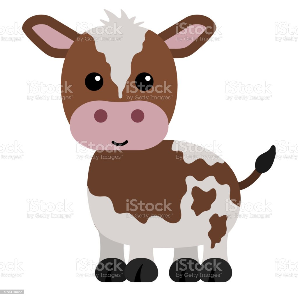 Brown and White Calf vector art illustration
