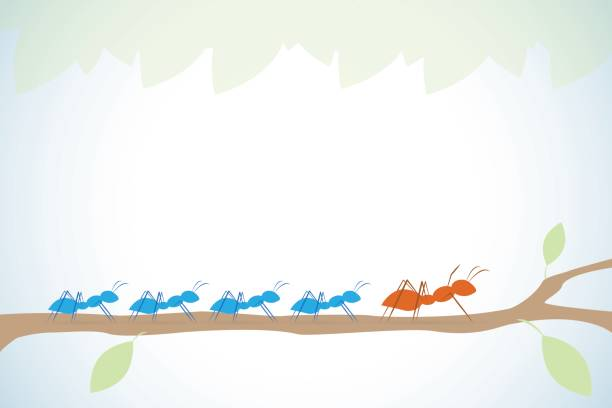 brown ant lead blue ants on branch with leaves, leadership and business concept vector art illustration