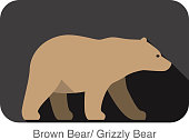 Brown bear walking side flat 3D icon design
