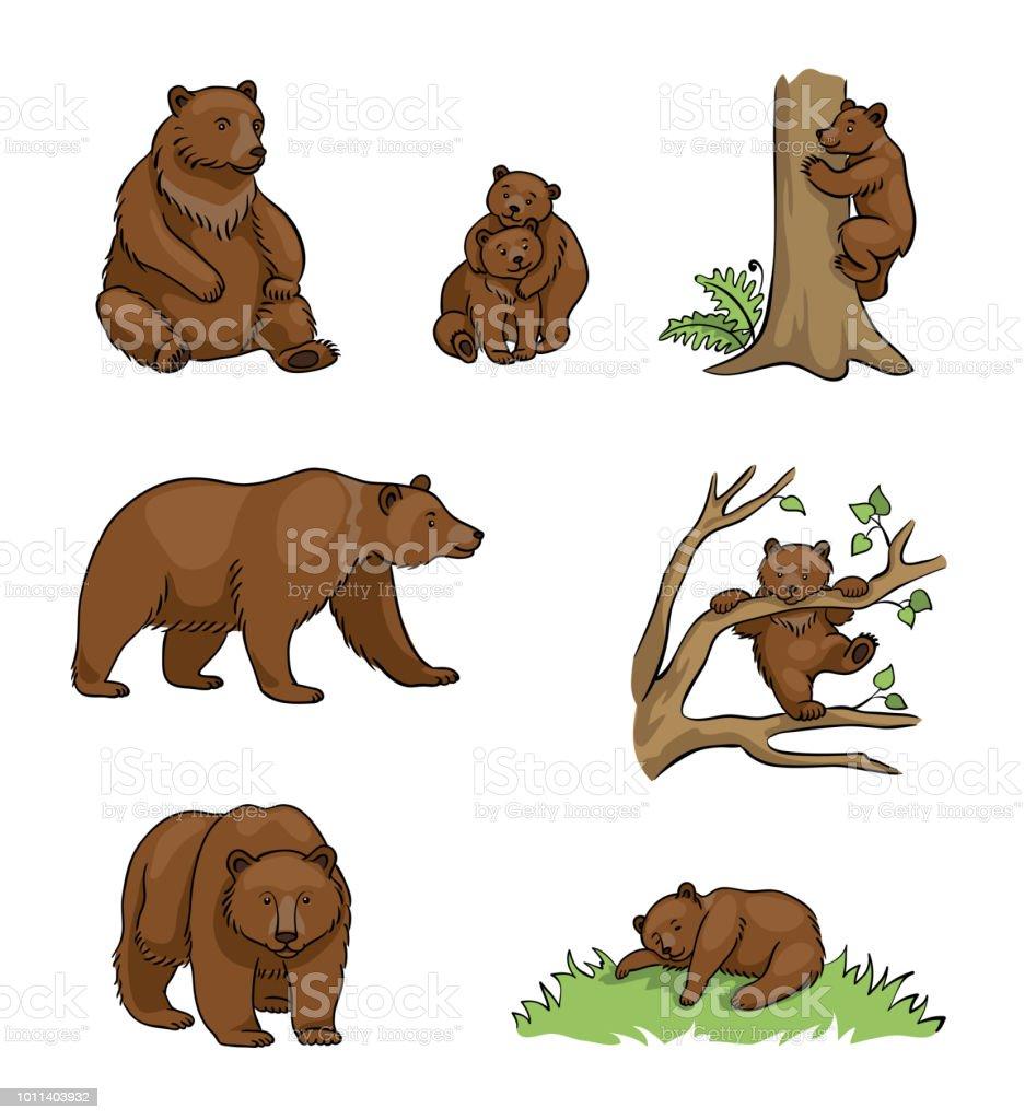 Brown bears - vector illustration vector art illustration