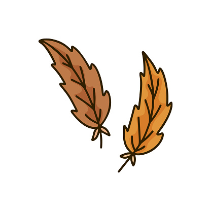 Brown bird feather on white background. Isolated doodle illustration