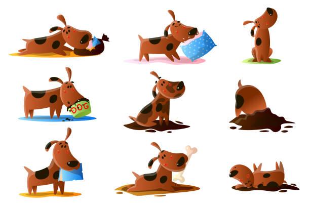 bildbanksillustrationer, clip art samt tecknat material och ikoner med brun tecknad hund uppsättning normala vardagliga aktiviteter isolerade på vit bakgrund - hunddjur