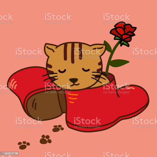 Brown cat sleep in a red boot vector id1164312739?b=1&k=6&m=1164312739&s=612x612&h=7efwlnddggetebmcbbj91p77ik j bngisdf8ieneky=