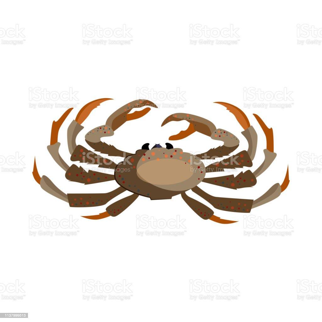 Brown Crab Illustration Stock Illustration Download Image Now Istock