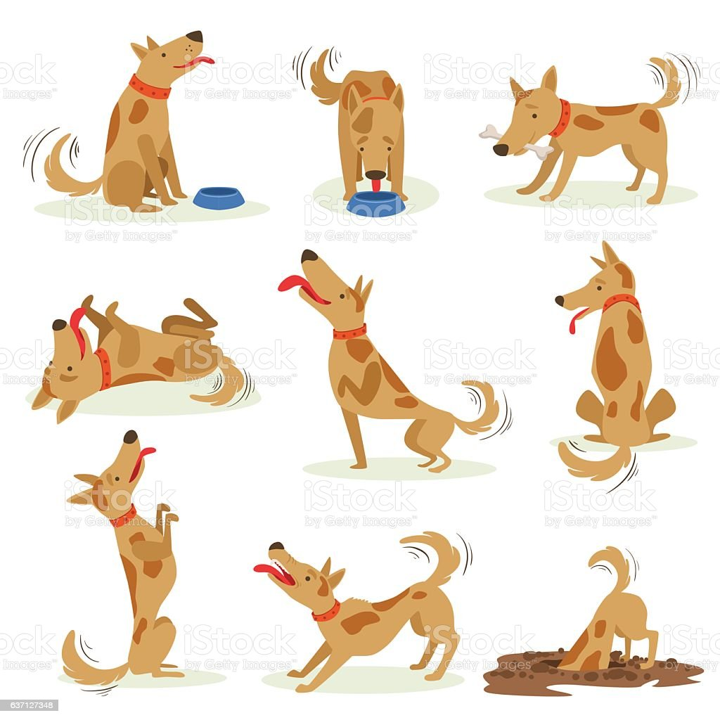 Brown Dog Set Of Normal Everyday Activities vector art illustration