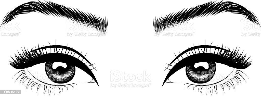 Braune Augen, formvollendete Augenbrauen und volle Wimpern – Vektorgrafik