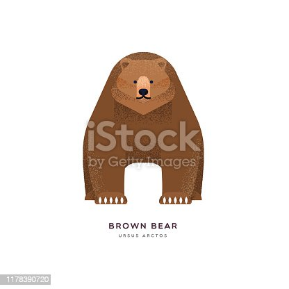 istock Brown grizzly bear isolated animal cartoon 1178390720