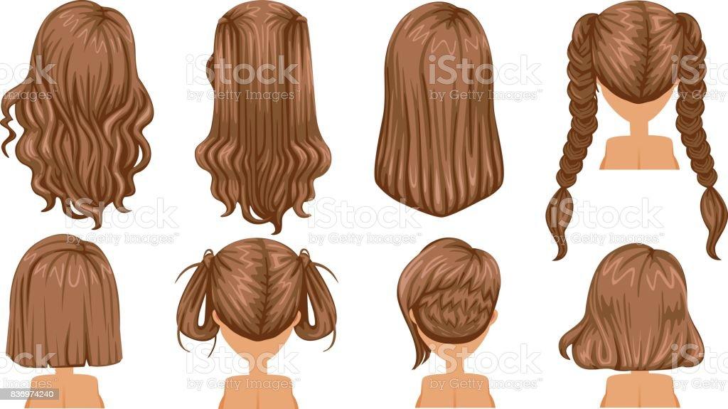 Brown hair vector art illustration