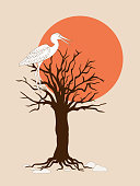 brown silhouette  tree without leaves, sun and heron