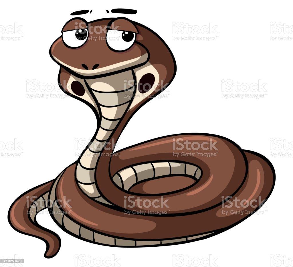 Brown snake on white background vector art illustration