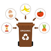 Recycling organic waste, compost, segregate waste, sorting garbage, eco friendly, concept. White background. Vector illustration, flat style.