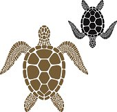 Brown turtle facing the opposite direction to a black turtle