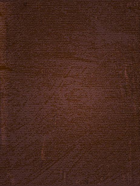 ilustraciones, imágenes clip art, dibujos animados e iconos de stock de vintage fondo de cuero marrón - textura de pieles