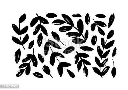 Brush branches with leaves vector collection. Set of black silhouettes leaves and branches. Hand drawn eucalyptus foliage, herbs, tree twig. Vector ink elements isolated on white background.