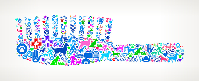 Brush Dog and Canine Pet Colorful Icon Pattern