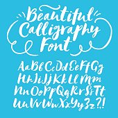 Hand drawn brush ink vector ABC upper and lower case letters set. Beautiful calligraphy font for your design.