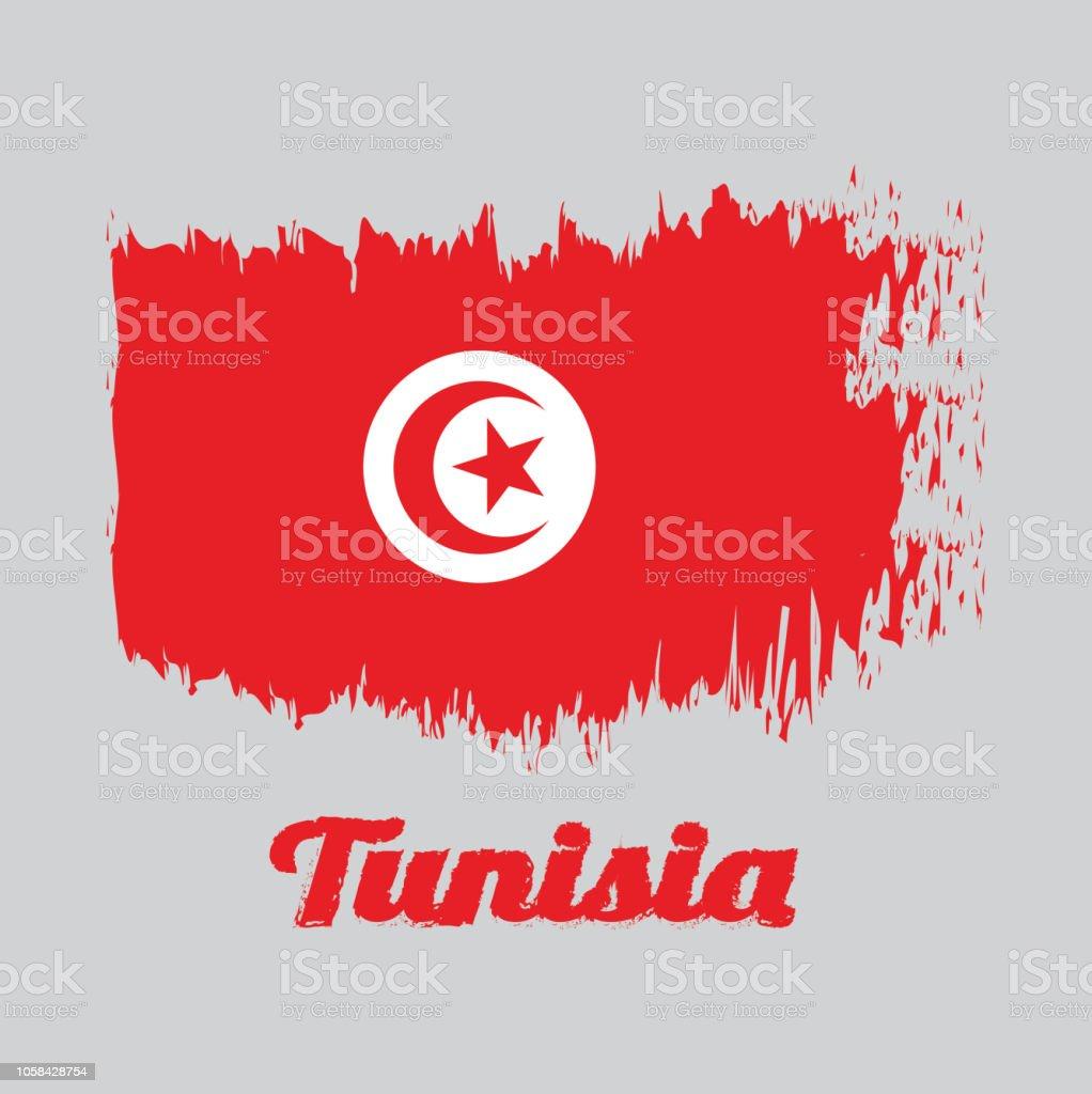 Bandera roja con media luna y estrella blanca
