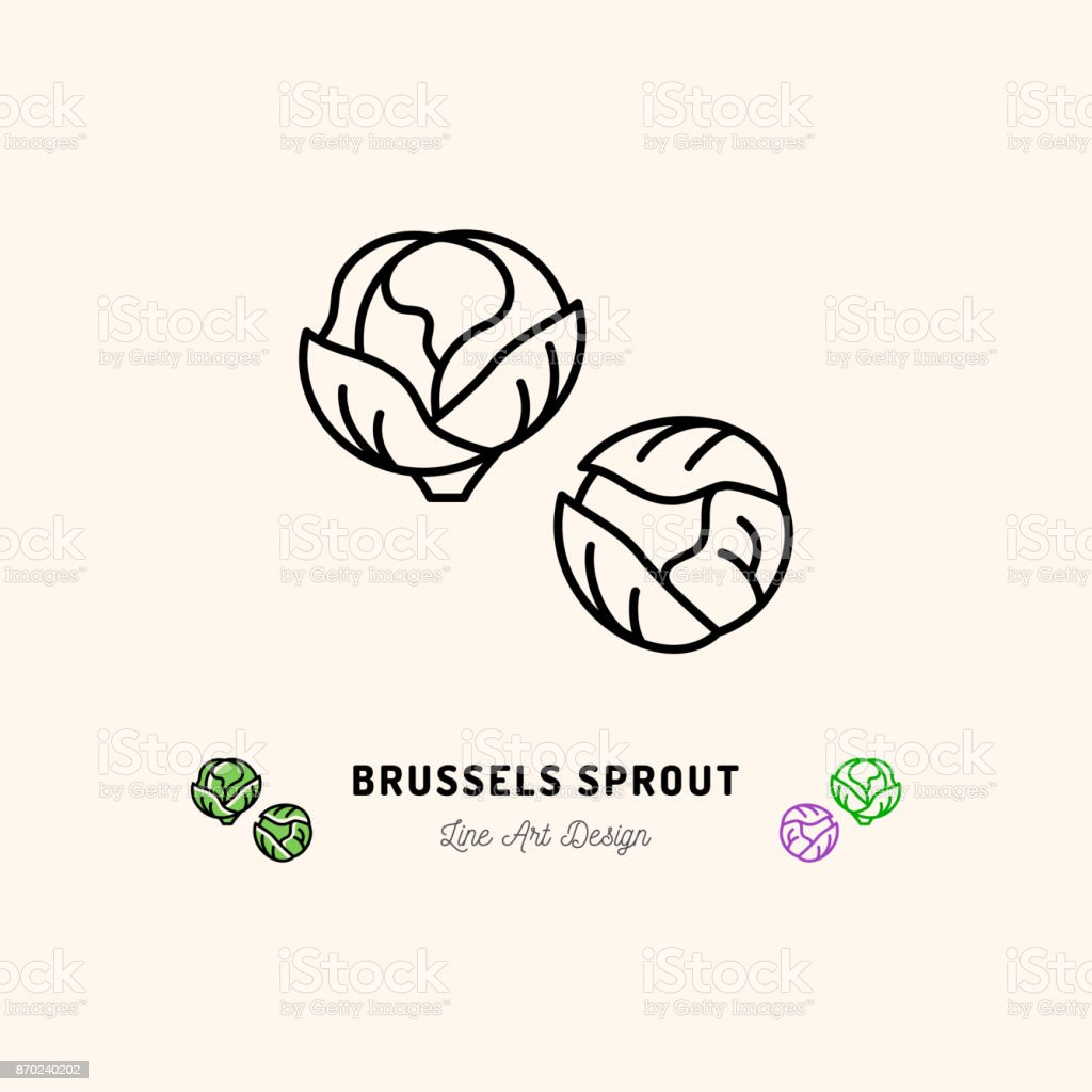 Brussel sprouts icon, Vegetables  Cabbage. Thin line art desig vector art illustration