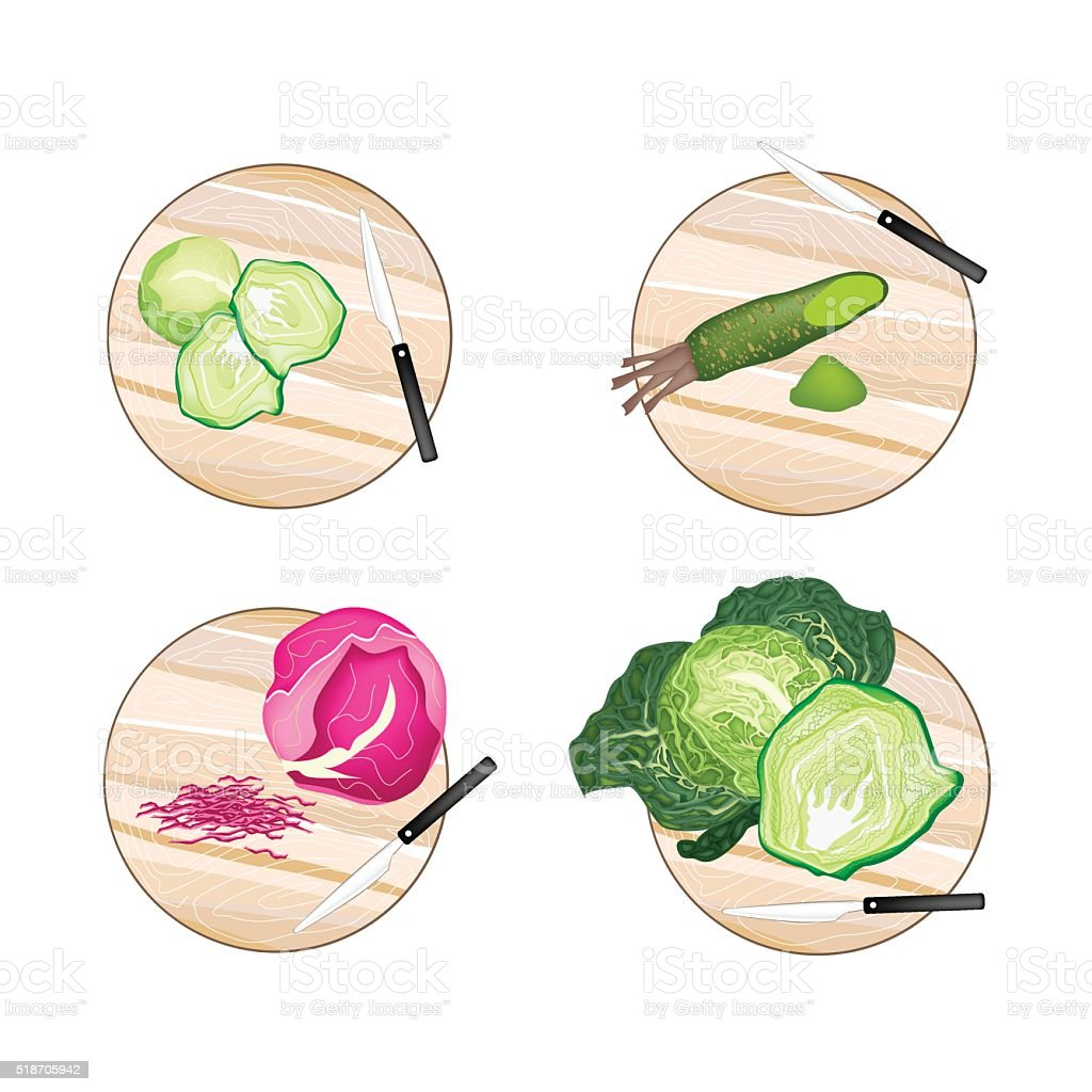 Brussels Sprout Savoy Cabbage Purple Cabbage And Wasabi Roots Stock Illustration Download Image Now Istock