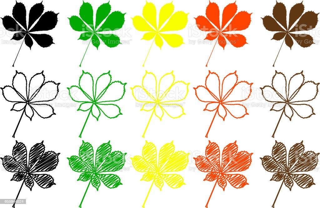 buckeye leaf color set vector art illustration
